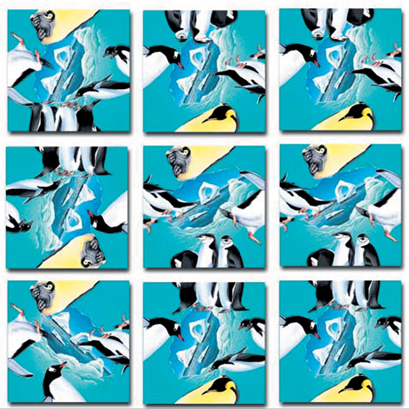Penguins Birds Jigsaw Puzzle