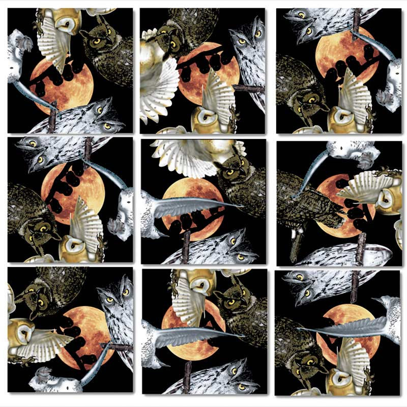 Owls Birds Jigsaw Puzzle