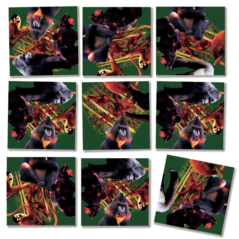 Primates Other Animals Jigsaw Puzzle