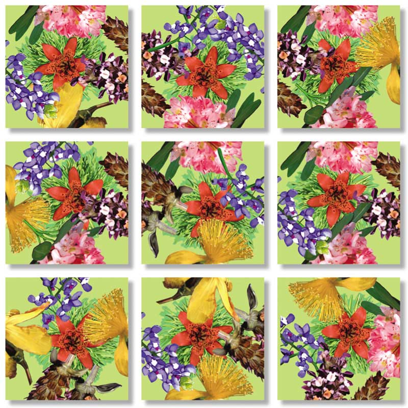 American Native Flowers Flowers Jigsaw Puzzle