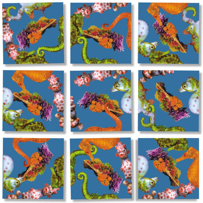 Seahorses Under The Sea Jigsaw Puzzle