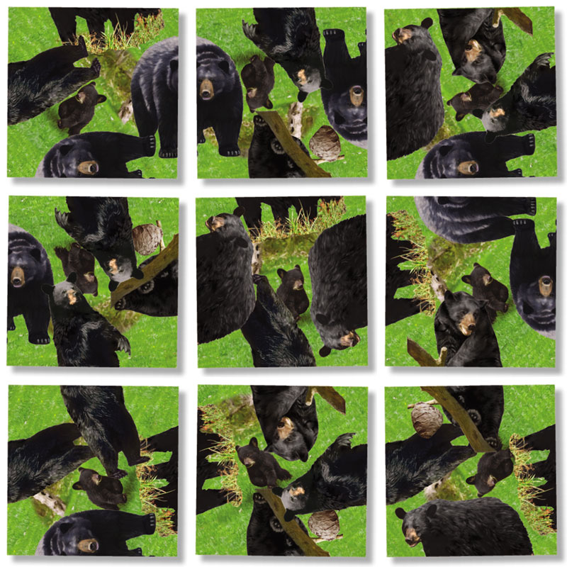 Black Bears Bears Jigsaw Puzzle