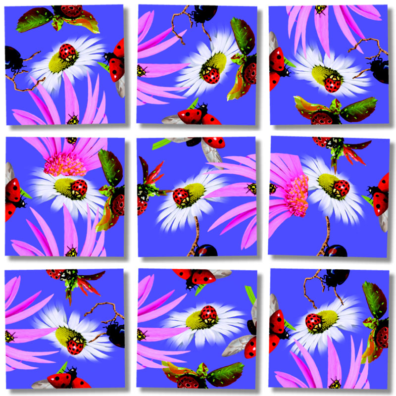 Ladybugs Butterflies and Insects Jigsaw Puzzle