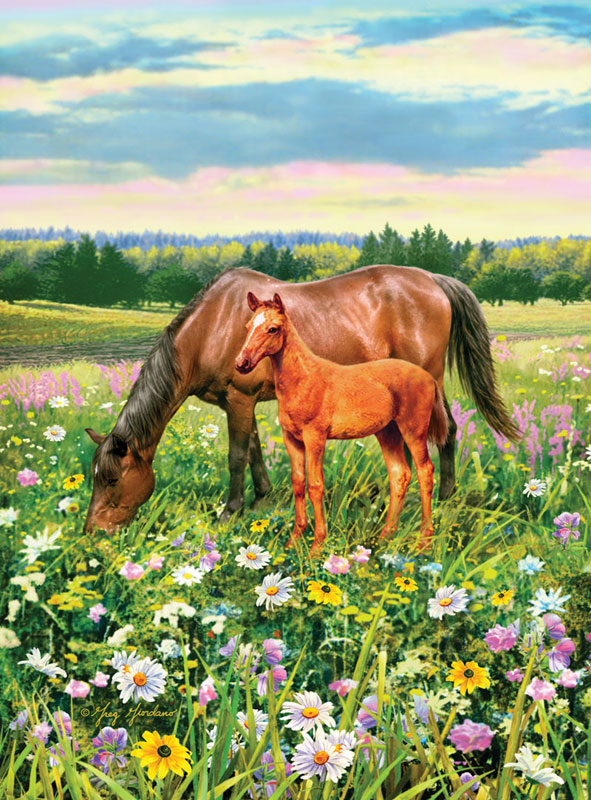 Horse's Pasture Horses Jigsaw Puzzle