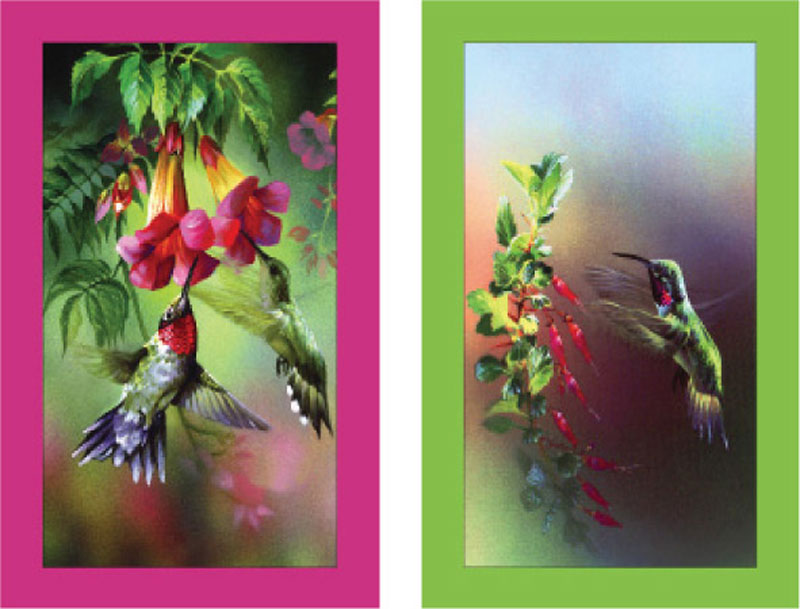Bridge Set - Hummingbirds Playing Cards