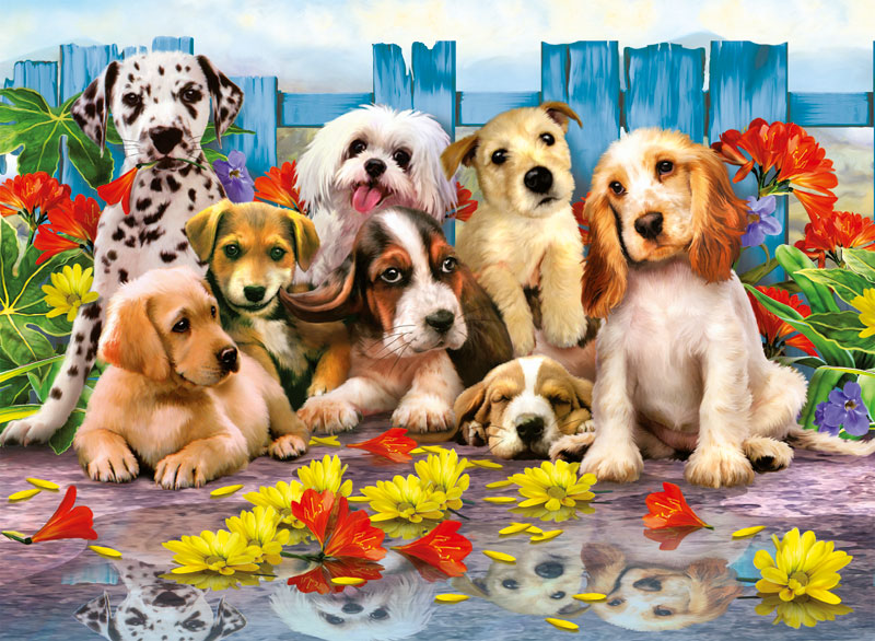 Posing Pups Dogs Children's Puzzles