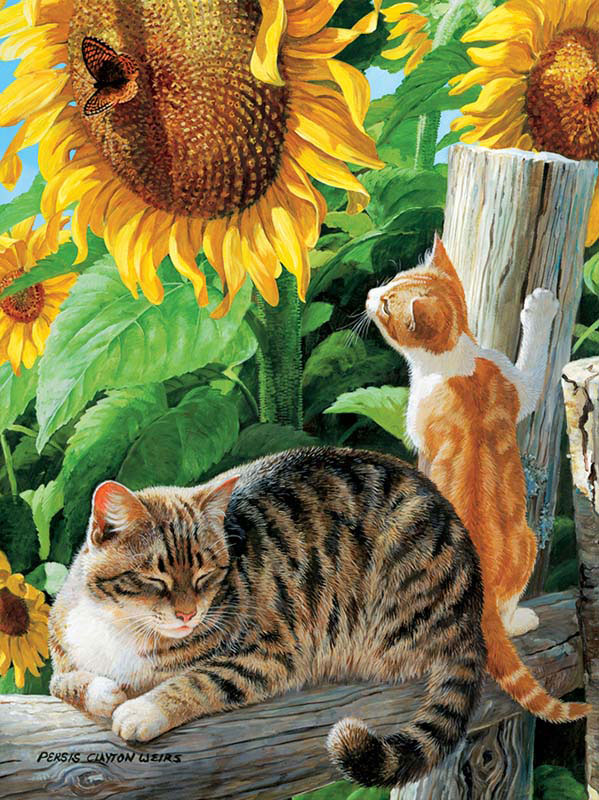 Sun Seekers Cats Jigsaw Puzzle