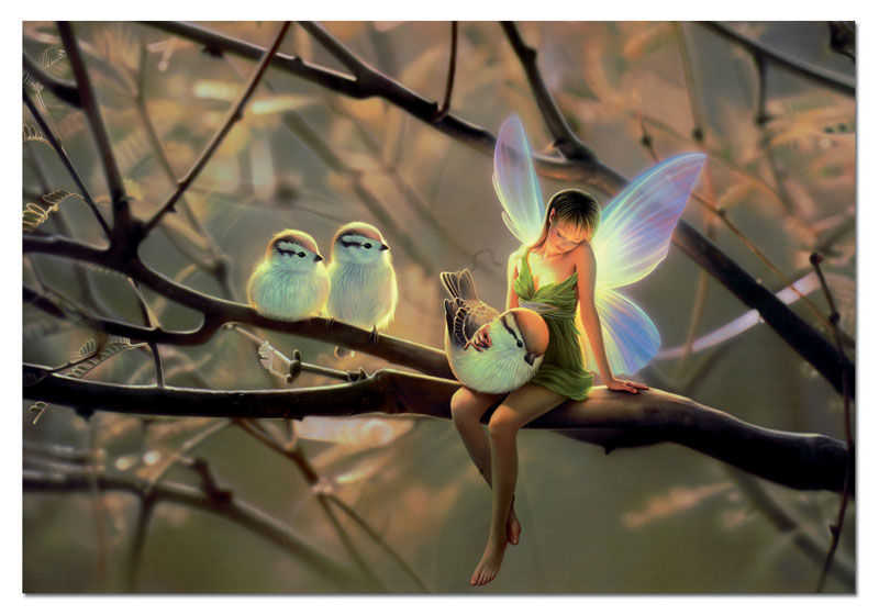 Feathered Friends Fairies Jigsaw Puzzle