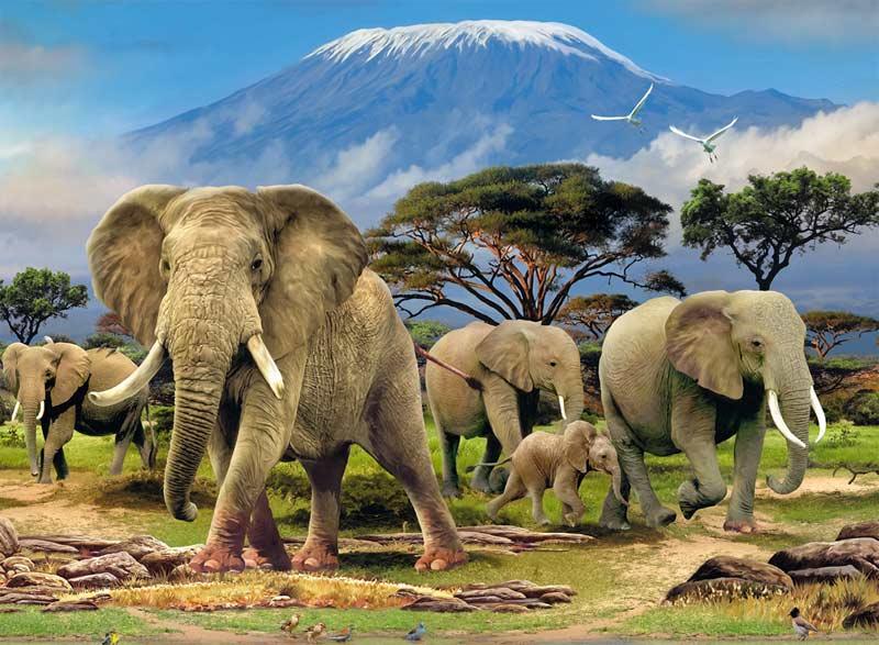 Elephants Jungle Animals Jigsaw Puzzle