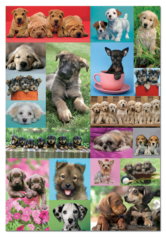 Puppies Collage Collage Jigsaw Puzzle