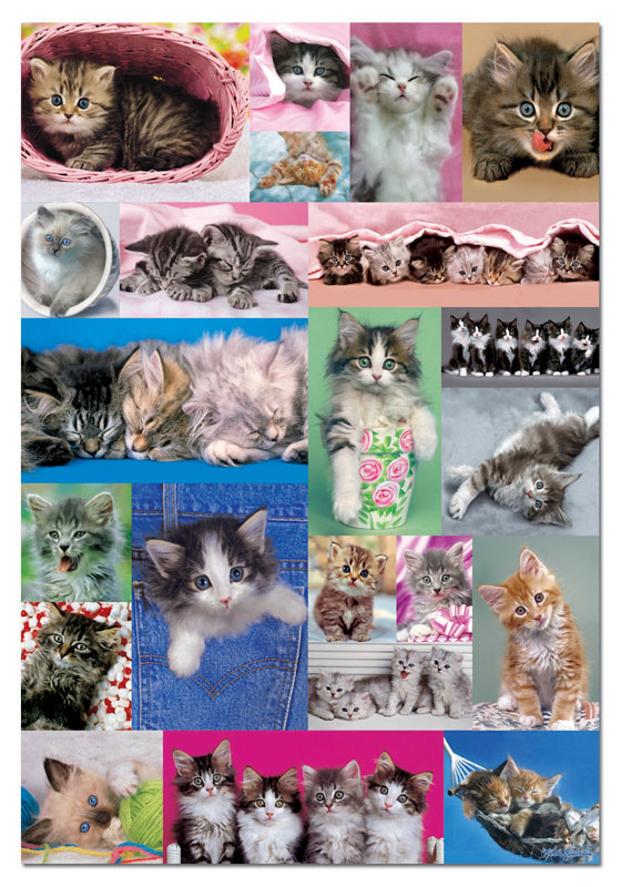 Kittens Collage Cats Jigsaw Puzzle