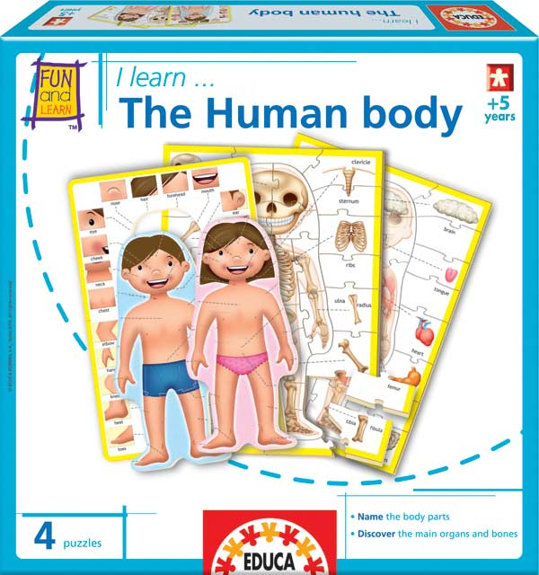 i learn the human body jigsaw puzzle | puzzlewarehouse, Skeleton
