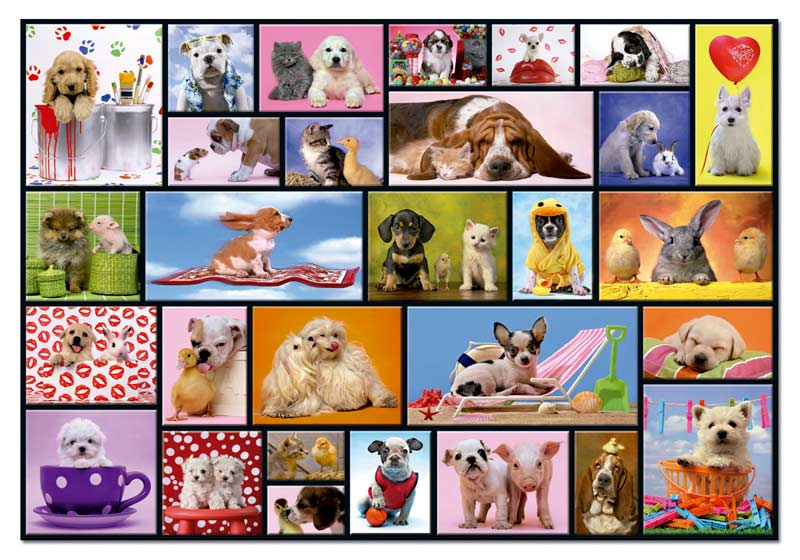 Shared Moments Dogs Jigsaw Puzzle