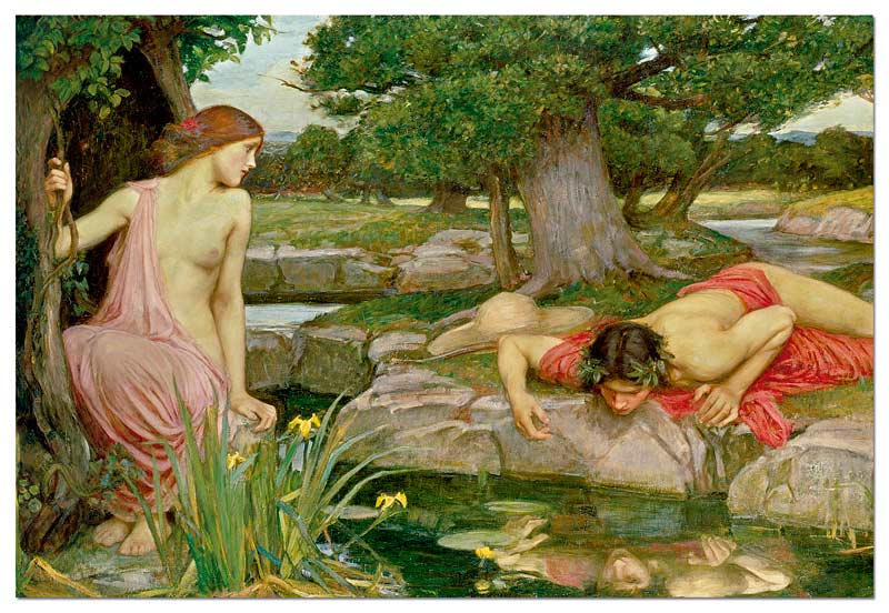 echo and narcissus j w waterhouse jigsaw puzzle  echo and narcissus j w waterhouse fine art jigsaw puzzle