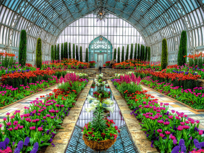 Atrium Garden - Scratch and Dent Flowers Jigsaw Puzzle