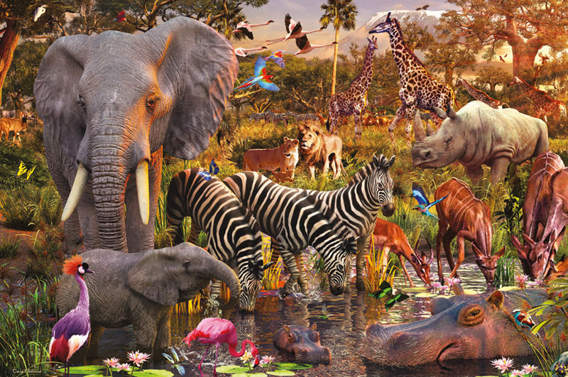 African Animal World Birds Jigsaw Puzzle