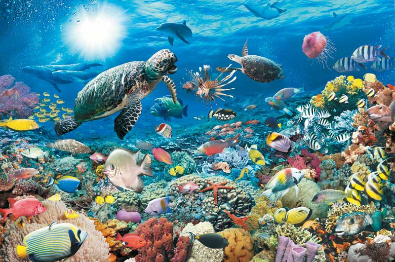 Underwater Tranquility Under The Sea Jigsaw Puzzle