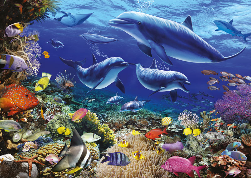 Family of Dolphins Marine Life Jigsaw Puzzle