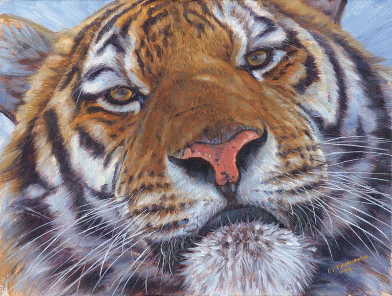Animal Planet - Bengal Tiger Jungle Animals Jigsaw Puzzle