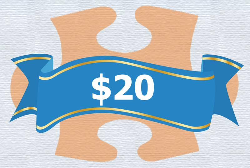 Life Skills - $20 Donation Vehicles Jigsaw Puzzle