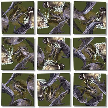 Alligators Reptiles and Amphibians Jigsaw Puzzle