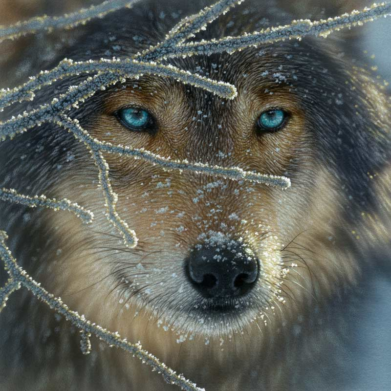 Fire Within Ice - Scratch and Dent Wolves Jigsaw Puzzle