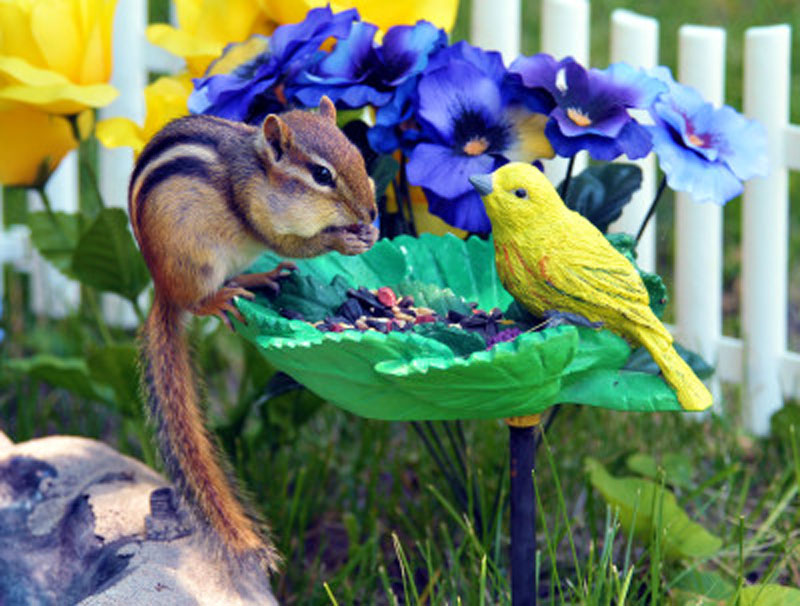 Chipmunk Flowers Wooden Jigsaw Puzzle