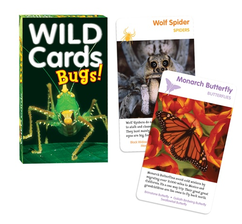 Wild Cards: Bugs Butterflies and Insects Card Game