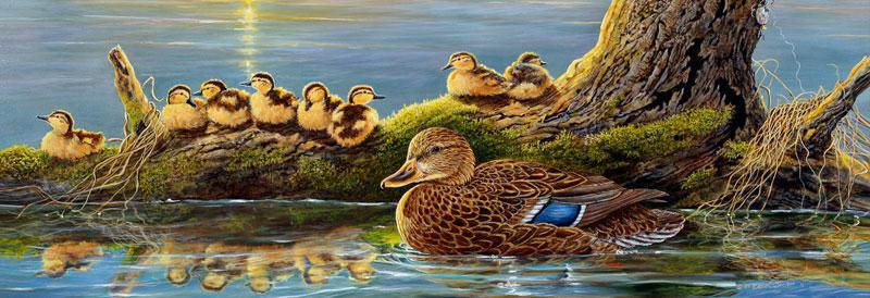 Spring Mallards Birds Jigsaw Puzzle