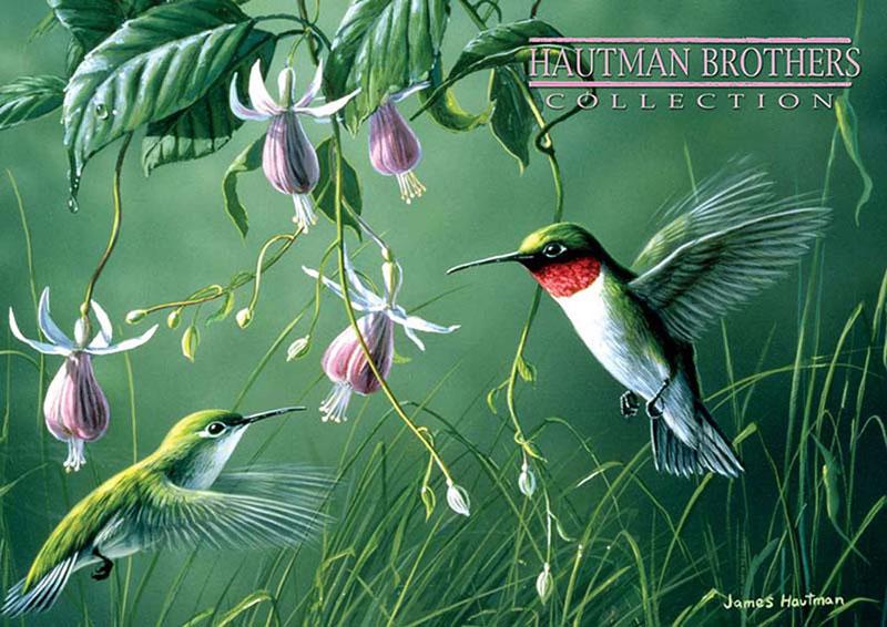 Hummingbirds and Fuschia Birds Jigsaw Puzzle