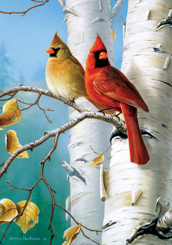 Cardinals and Birch Birds Jigsaw Puzzle