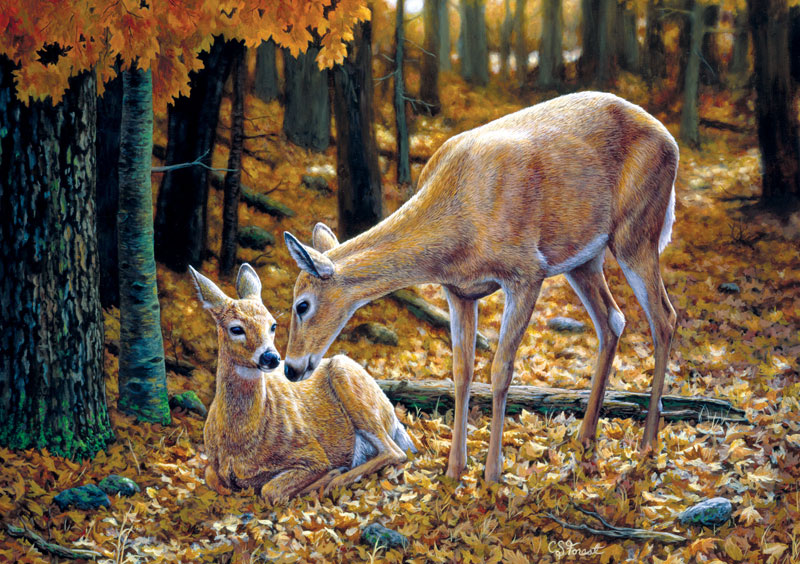Autumn Innocence Wildlife Jigsaw Puzzle