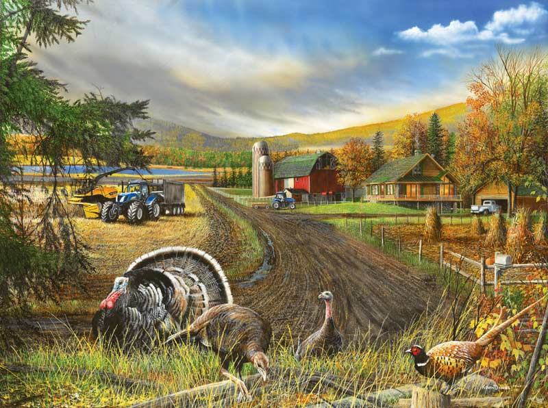 Country Living - Scratch and Dent Countryside Jigsaw Puzzle