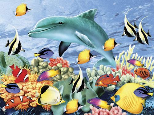 Something Fishy Dolphins Jigsaw Puzzle