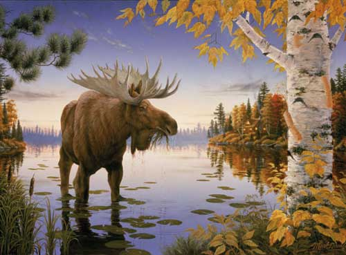 Majestic Moose Outdoors Jigsaw Puzzle