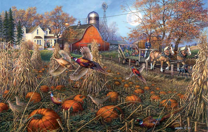 Pheasant Pumpkin Patch Jigsaw Puzzle Puzzlewarehouse Com