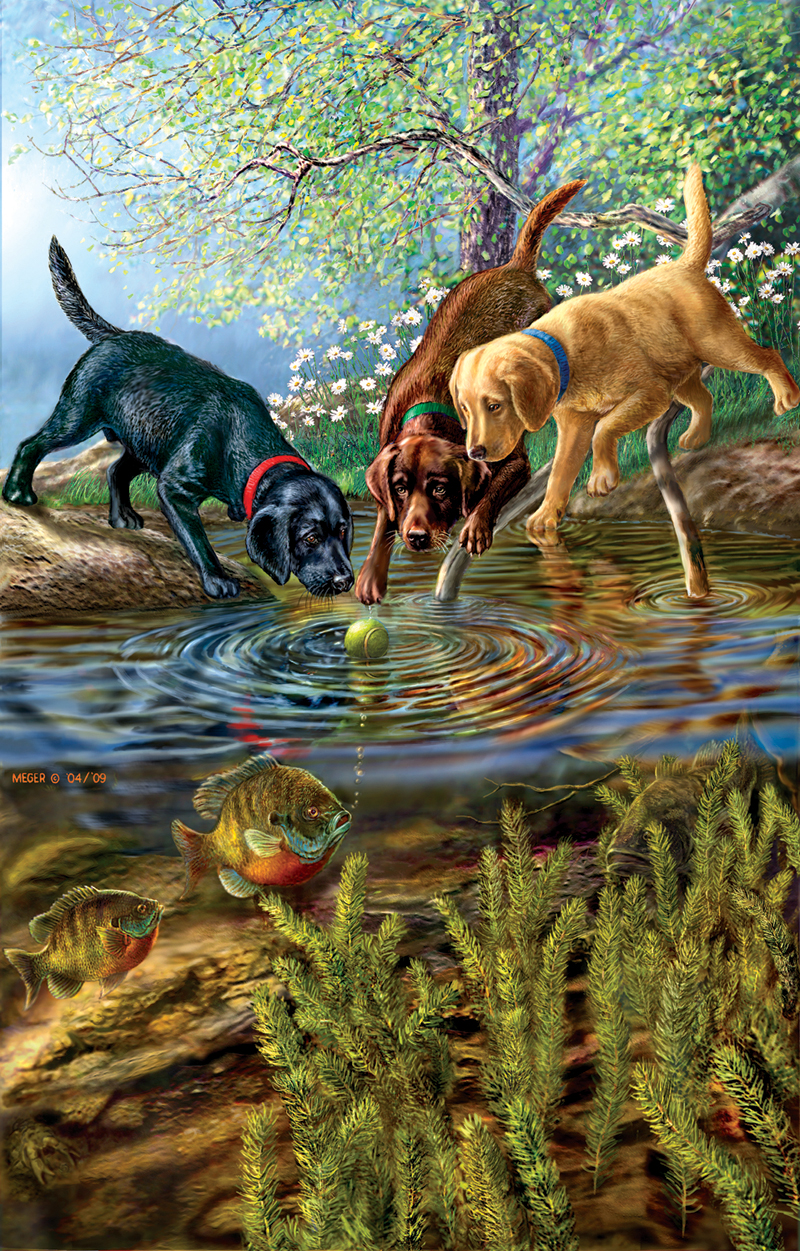 Bubbles Dogs Jigsaw Puzzle