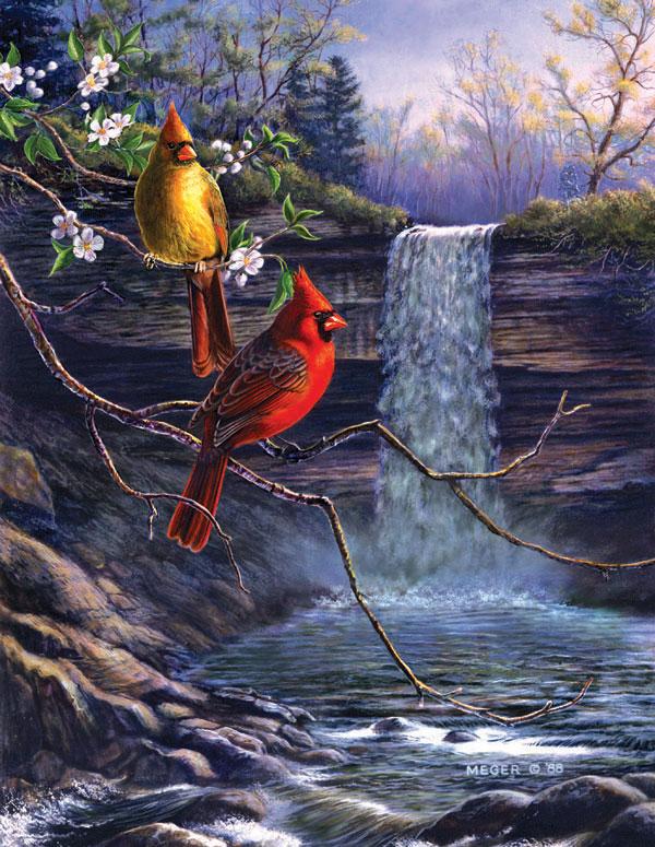 Heritage Cardinals Birds Jigsaw Puzzle