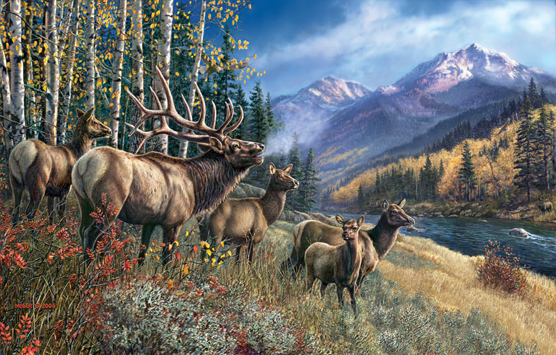 Elk Anthem - Scratch and Dent Wildlife Jigsaw Puzzle