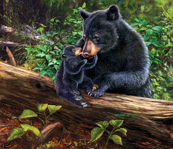 Lily & Hope Bears Jigsaw Puzzle