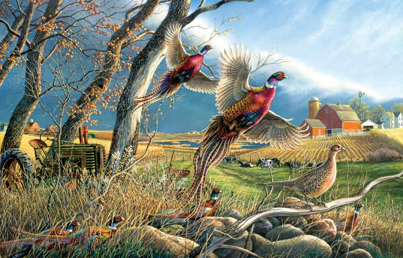 The Front Birds Jigsaw Puzzle