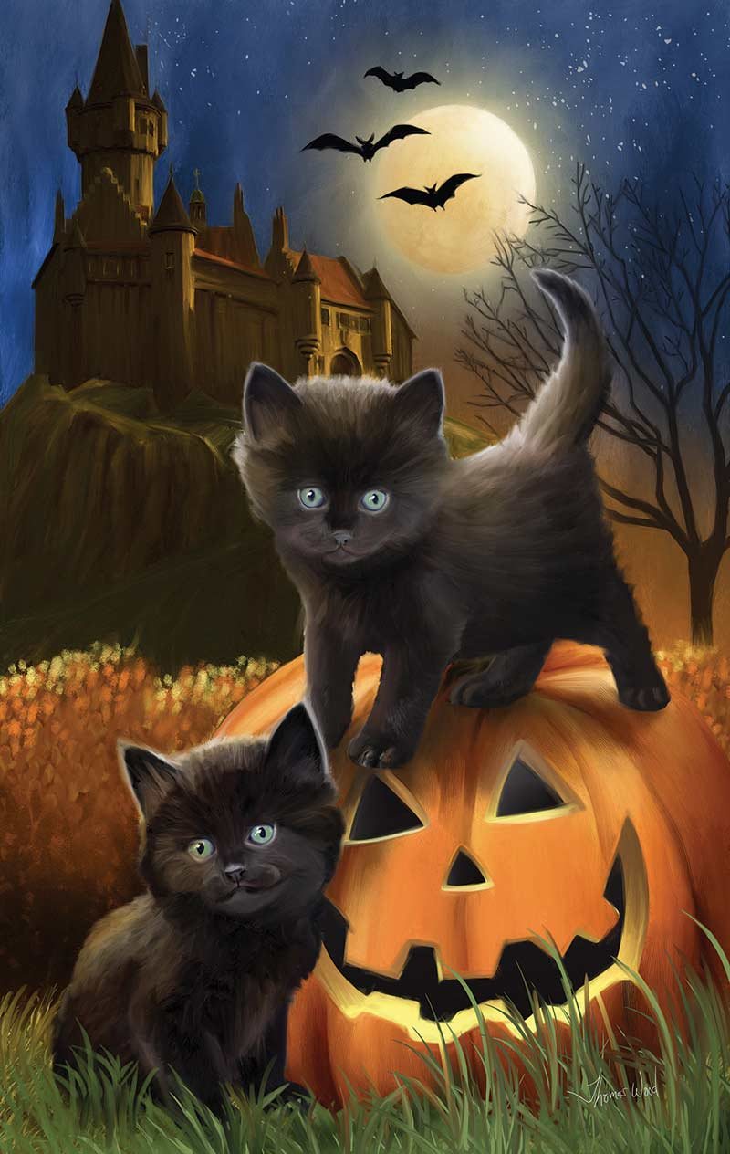 Did We Scare You? Cats Jigsaw Puzzle