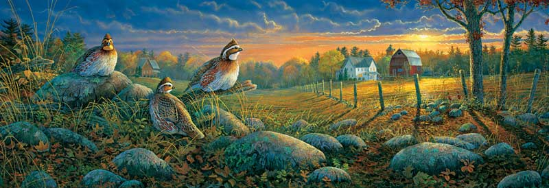 Quail at Evening Sunset Birds Jigsaw Puzzle