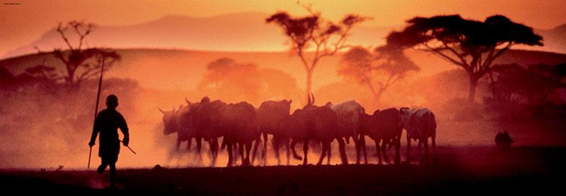Kalahari Desert Photography Jigsaw Puzzle