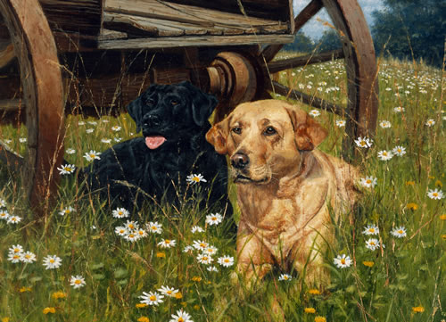 Rest Awhile Dogs Jigsaw Puzzle