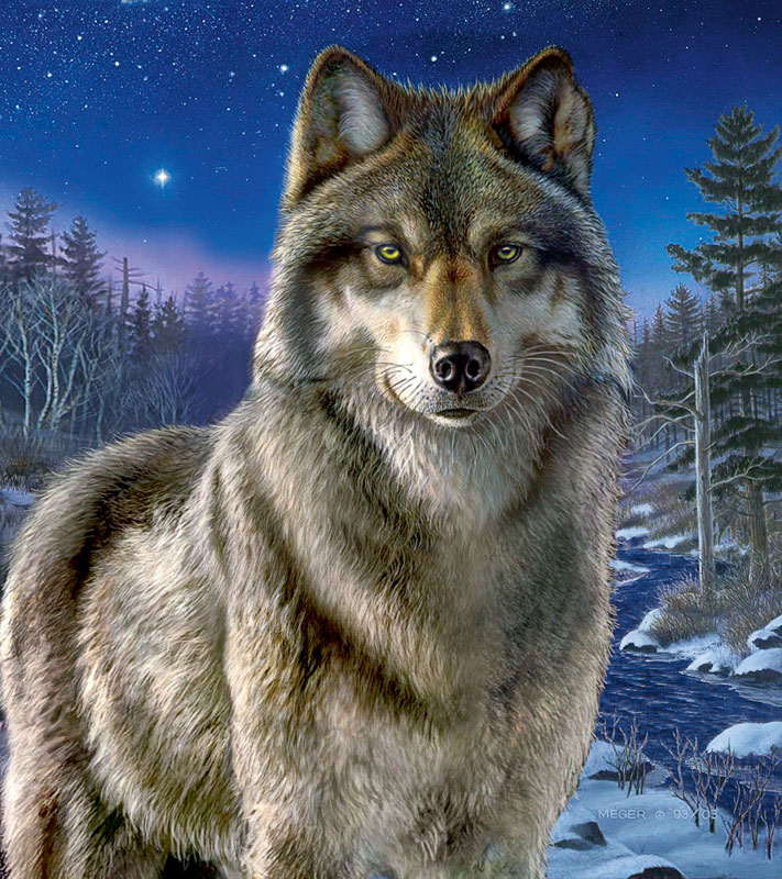 Night Watch Wolves Jigsaw Puzzle
