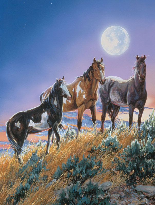 Under the Desert Moon Horses Jigsaw Puzzle