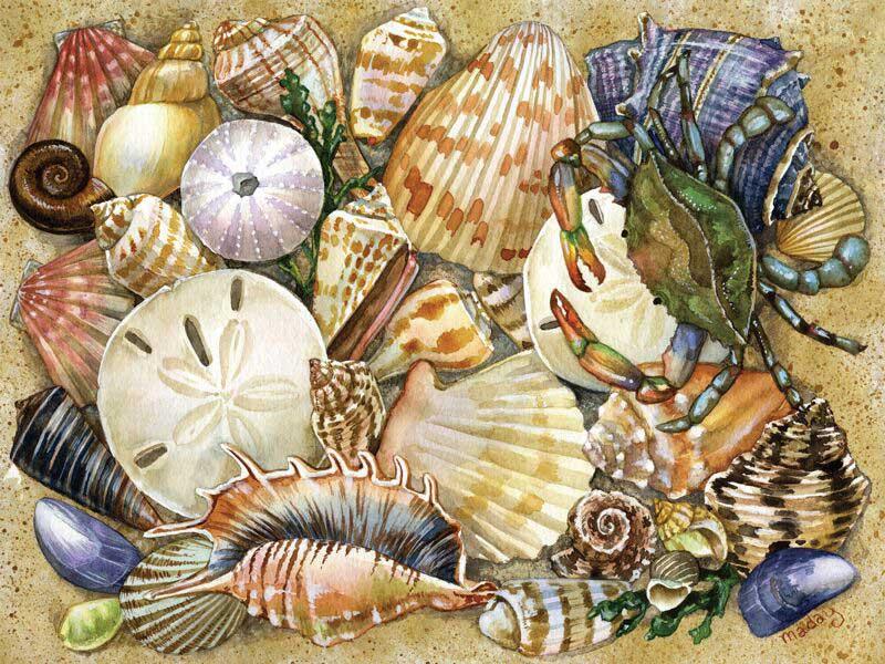 Tidal Treasures Beach Jigsaw Puzzle