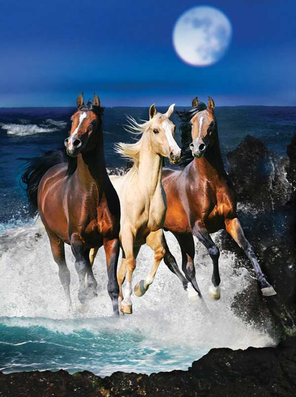 Masters of Photography Space Savers - Moonlight Trio Horses Jigsaw Puzzle