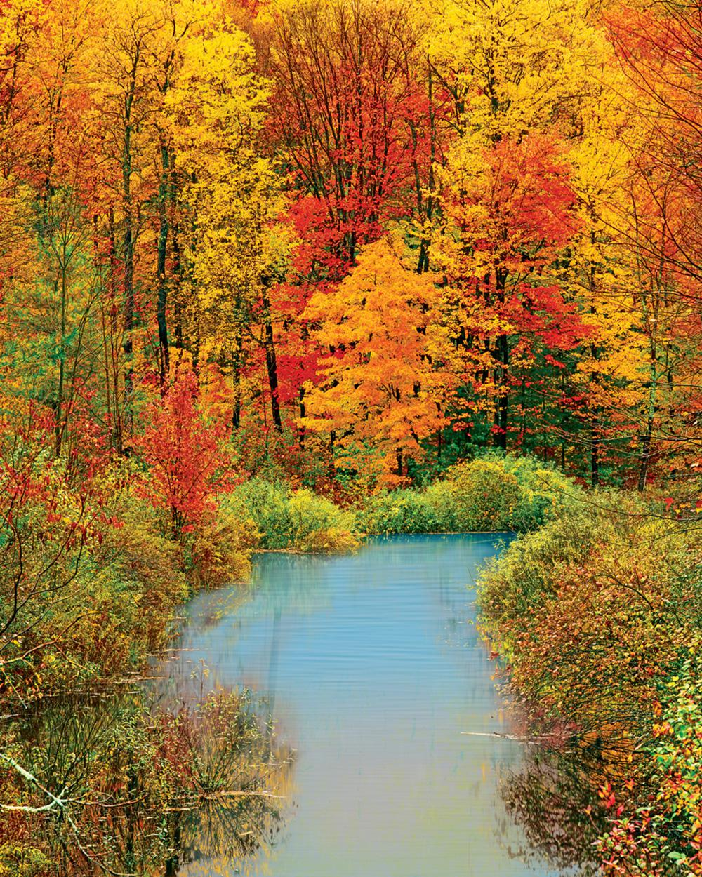 Autumn Reflection Fall Jigsaw Puzzle
